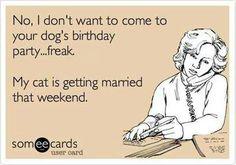 Dog's birthday party