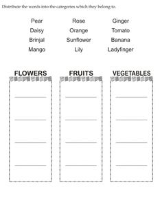 Download english activity worksheet Distribute the words into the categories which they belong to from bestcoloringpages.com