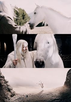 Gandalf and Shadowfax.