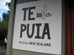 Te Puia - Rotorua - Reviews of Te Puia - TripAdvisor