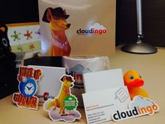 A new customer received her Dingo Welcome Pack.