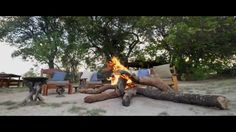 Tongabezi Lodge is a romantic hideaway on the banks of the Zambezi River just upstream of Victoria Falls. Our friendly team welcomes guests to a selection of. Livingstone, Victoria Falls, Outdoor Furniture Sets, Outdoor Decor, Cottages, Embellishments, Safari, The Selection, Africa