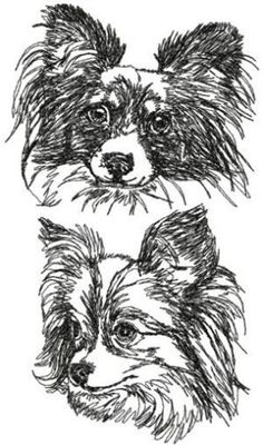 Online center for machine embroidery designs. On this site you can find machine embroidery designs in the most popular formats, with a new free machine embroidery design each month. Pappillon Dog, Pet Dogs, Dog Line Drawing, Advanced Embroidery, Dog Coloring Page, Silhouette Clip Art, Dog Items, Dog Portraits, Dog Art