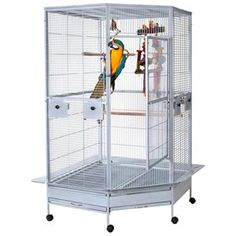 A very large free standing corner parrot cage made from tough and durable wrought iron. The perfect large cage for the corner of a room.
