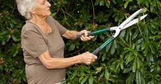 Trimming shrubs manually for 30 minutes - Burns 182 calories