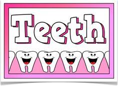 Teeth - Treetop Displays - A set of 11 posters about teeth. Ks2 Science, Science Resources, Science Lessons, School Displays, Classroom Displays, Teacher Hacks, Best Teacher, Baby Tooth Decay, Tooth Decay Treatment