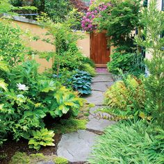 Soothing garden escape - Side Yard Ideas - Sunset
