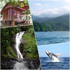 Workaway in Panama. Help at our ecolodge on the Panama pacific coast. Kayak Fishing, Pacific Coast, Panama, Kayaking, Summer, Pacific Rim, Kayaks, Panama Hat, Summer Recipes