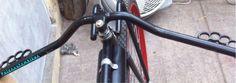 Rat bicycle.