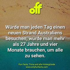 62 Fakten über Australien Random Facts, Countries, Spider Species, Poisonous Snakes, Facts About Animals, Some Amazing Facts, Unbelievable Facts, Australia