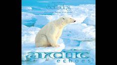 Arctic Echoes - Dan Gibson's Solitudes