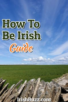 Through the power of #IrishCulture and #IrishHumor, the most elusive identity of all has now been unveiled.  Just let this Guidance Gold see you right.  ☘️ Chuckle & Embrace — Nuggets of Wisdom from all Aspects of the Irish Condition ☘️  #HowToBeIrish #IrishHeritage #IrishQuotes #IrishJokes #H2BI #IrishDrinks #DrunkJokes #IrishLiquor #IrishQuotesFunny #IrishAmerican #ShortIrishJokes #IrishRecipes #IrishJokesOneLiners #IrishThings #IrishQuotesHumor #TraditionalIrish