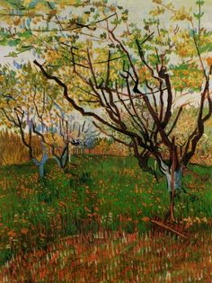 Orchard in Bloom (1888) by Vincent Van Gogh
