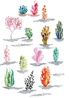 Algae and coral watercolor painting by Miss Capricho Illustrations, Illustration Art, Watercolor Paintings, Watercolors, Plants Watercolor, Coral Watercolor, Coral Painting, Painting & Drawing, Gouache Painting