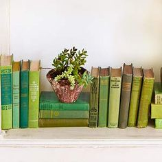 Green Vintage Books - cute idea find old books at garage sales thrift stores to match your decor colors