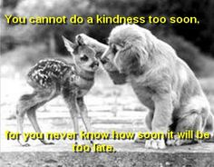 Do a kind thing before it is too late