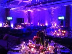 Uplighting, color wash, pinspotting and break out patters... just a few things seen here that Invisible Touch can do to make your event fabulous!  www.invisibletouchdj.com