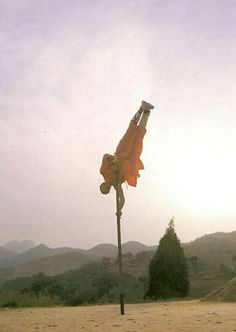 Monaco Shaolin.....