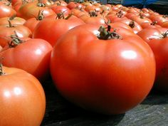 Tomato sauce and marinara sauce