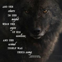 ideas dogs love tattoo wolves for 2019 Wolf Qoutes, Lone Wolf Quotes, Wolf Images, Wolf Pictures, Wisdom Quotes, True Quotes, Wolf Spirit Animal, Wolf Love, She Wolf
