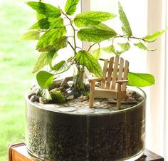 Amazing 50+ Awesome Ideas to Display Your Indoor Mini Garden https://homegardenmagz.com/50-awesome-ideas-to-display-your-indoor-mini-garden/