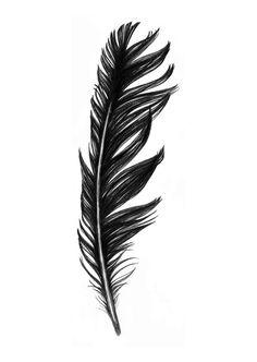 Flight, 50x70 cm - Illustration - ART