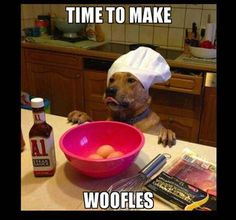 TIME TO MAKE WOOFLES