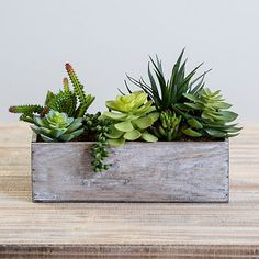 Grow your faux plant collection with this super cute Succulent Arrangement in Wooden Box! It would make a great centerpiece for your dining room table. Arrangement measures 13L x 5W x 9H in. Artificial succulent arrangement Crafted of artificial materials Features wooden planter Maintenance free Hues of green and brown Not safe for outdoor use Care: Item may need to be re-shaped when removed from box; wipe clean with a so Indoor Planter Box, Planter Box Centerpiece, Succulent Centerpieces, Succulent Arrangements, Planter Boxes, Wall Planters, Table Arrangements, Fake Plants Decor, House Plants Decor