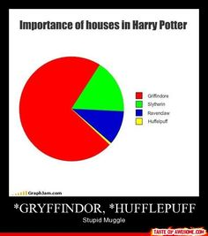 *gryffindor, *hufflepuff    ...excuse me? Someone is going to get cursed in the middle of the night. Please. Without Slytherin, there would be no antagonist. With no antagonist, there would be no story. Get with the program, muggles!