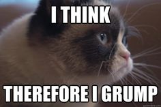 Introspective Grumpy Cat