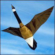 Martin's Canada Goose Kite