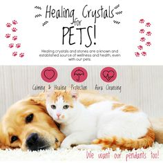 Healing crystals are a known and established source of wellness and health for our loved pets. Healing crystals have another edge over other therapies for pets since they are totally non intrusive and carry no potential side effects that can harm your pet. Pendants available for cats and dogs! :)