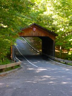 Sleeping Bear Dunes, Traverse City, Michigan. I took a picture next to this bridge with Becky. :)