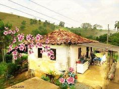 #Nilzagifsanimados: Casa velha da roça Cabin, House Styles, Lilies Of The Field, Life On The Farm, Simple Things, Old Houses, Farms, Plantation Houses, Landscape