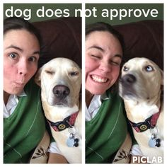 Maggie dog does not approve of her owner's shenanigans :-)