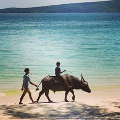 Koh Rong island, Cambodia....Epically untouched and pollution free....thus far! Lets hope it stays that way. (This is currently the only mode of transport there!)