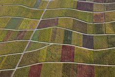 Klaus Leidorf's patterned aerial views.