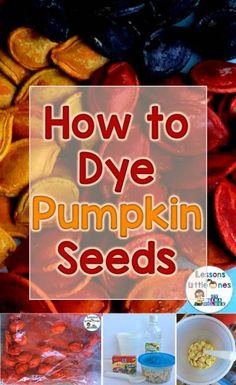 How to Dye Pumpkin Seeds & Dyed Pumpkin Seeds Activities - Lessons for Little Ones by Tina O'Block Diy Pumpkin Seeds, Pumpkin Seed Crafts, Seed Crafts For Kids, Preschool Crafts, Preschool Ideas, Kid Crafts, Pumpkin Seed Activities, Name Art Projects, Seed Art