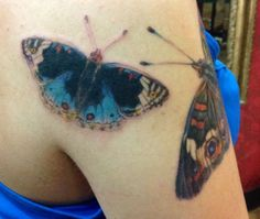 3rd Butterfly Tattoo of 4 (these are my personal tattoos) - realistic butterfly tattoo - Junonia orithya or Blue Pansy Butterfly