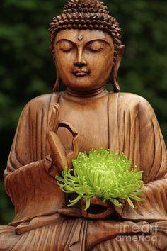 . Lotus Buddha, Art Buddha, Small Buddha Statue, Buddha Life, Buddha Zen, Buddha Buddhism, Buddha Statues, Buddha Canvas, Gautama Buddha