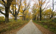 Mohawk Trail, Massachusetts - America's Most Iconic Drives | Travel + Leisure