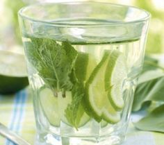 The refreshing flavors of lemon, ginger, and mint in a delicious mojito! Healthy Cocktails, Summer Cocktails, Yummy Drinks, Detox Drinks, Ginger Mojito, Grapefruit Diet, Mint Mojito, Ginger Ale, Flavored Water Recipes