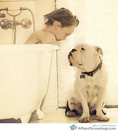 Bulldog :) this is such a cute picture. Anyone who has ever owned a Bulldog can appreciate it! Love My Dog, Puppy Love, Animals For Kids, Cute Animals, Animals Images, Tier Fotos, Baby Kind, Baby Dogs, Doggies