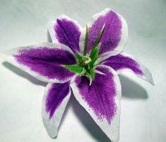 Purple Stargazer Lily