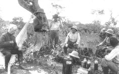 Almanac of Theodore Roosevelt - Roosevelt Rondon Expedition To Brazil 1913-1914