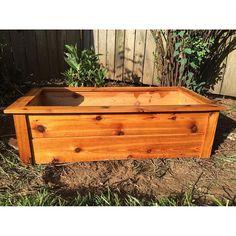 Jack King and his Cedar planter box.