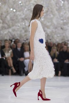 christian-dior-couture-fall-2014-06_191320548746