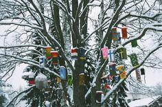 Bird House Tree!!