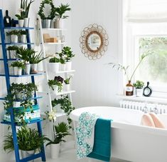 Plants for bathroom awesome bathroom design fabulous bathroom flowers and p Bathroom Flowers, Bathroom Plants, Hanging Plants, Indoor Plants, Open Bathroom, Bathroom Ideas, Bathroom Ladder, Bathroom Vanities, Easy Garden