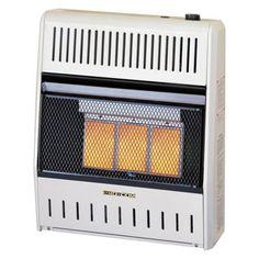 Reddy Heater 30 000 Btu Blue Flame Dual Fuel Wall Heater